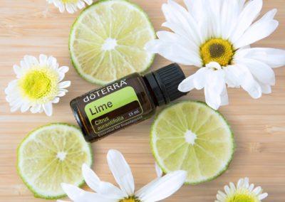 Lime (citron vert)
